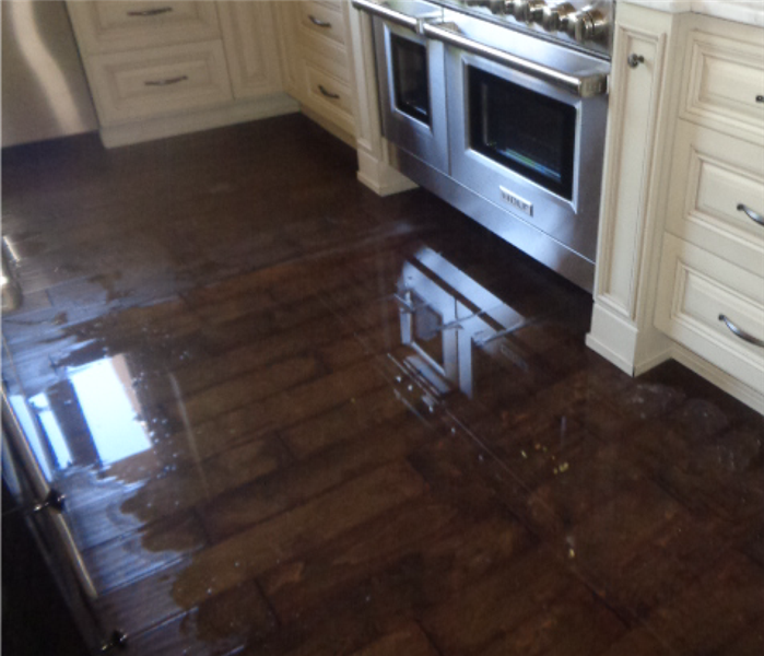 Standing water in a kitchen covering the hard wood floors in front of the oven