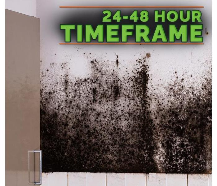 Why SERVPRO 3 Tips for Preventing Mold