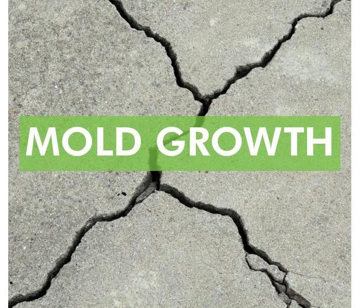 Crack in building foundation with the words on the middle of picture MOLD GROWTH