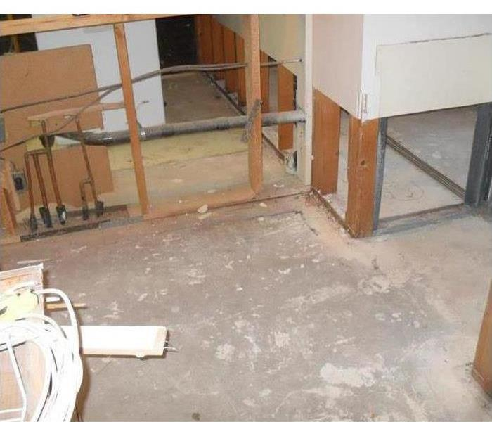 Mold Remediation 3 Important Steps in the Mold Remediation Process